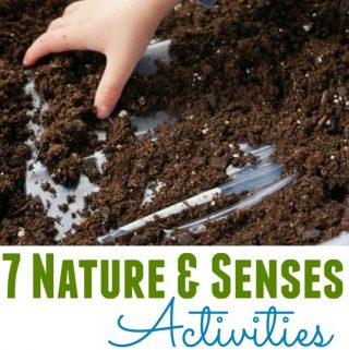 7 Nature and Senses Activities - Ideas for LDS Primary Music Leaders for Singing Time! Easy to adapt to any song.